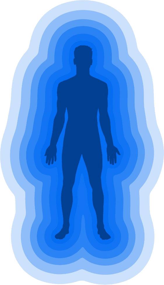 Организм человека как целостная система